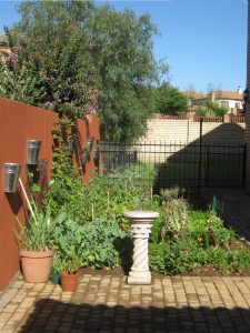 food garden irene