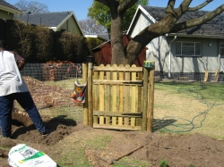 Gate, fence, irrigation added