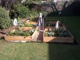 easy to just add more beds as your food garden grows